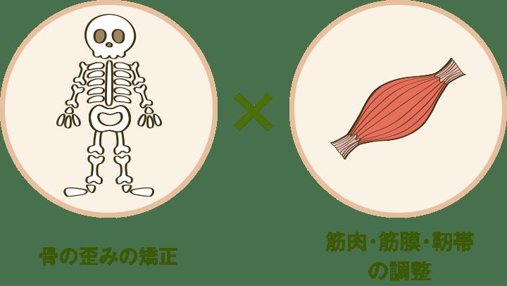 骨の歪みの矯正×筋肉・筋膜・靭帯の調整