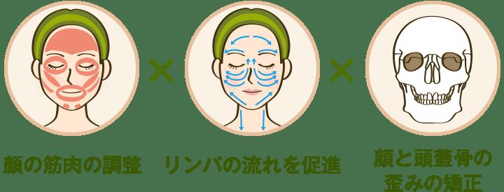 顔の筋肉の調整×リンパの流れを促進×顔と頭蓋骨の歪みの矯正