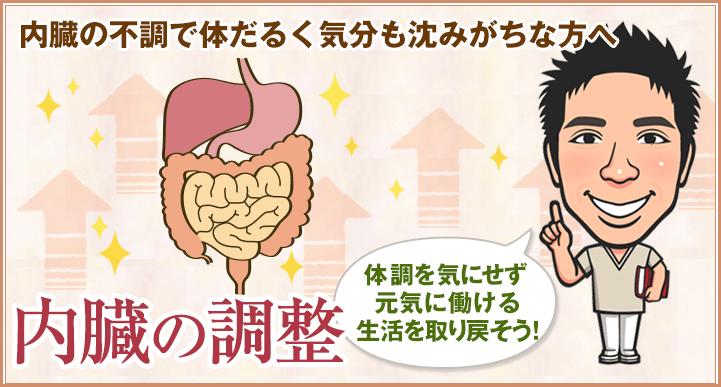 内臓の調整